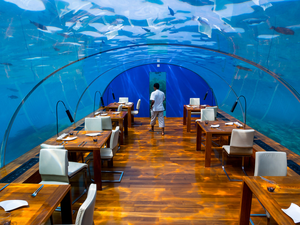 Indulge in luxurious ithaa underwater restaurant in for Restaurant atypique