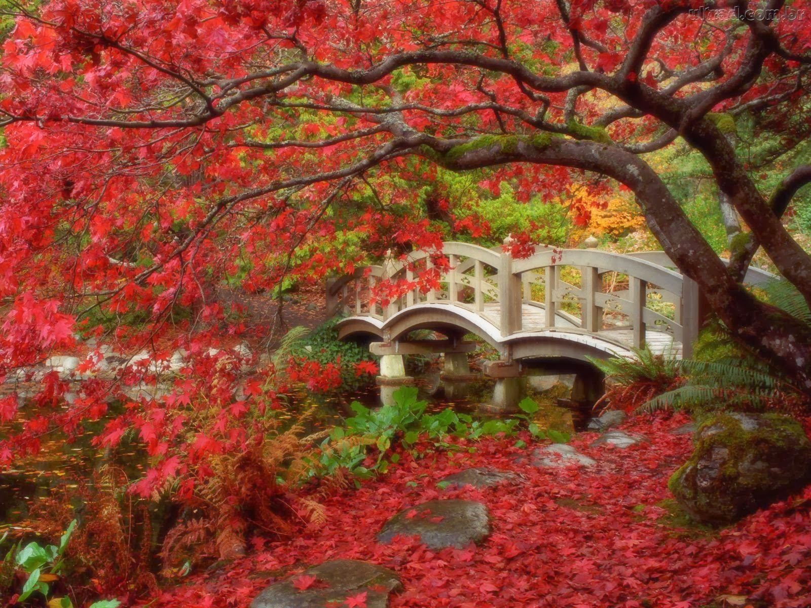 Nishinomaru Garden3