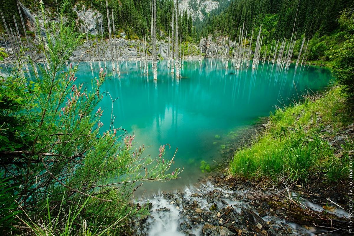 Lake Kaindy in Kazakhstan5