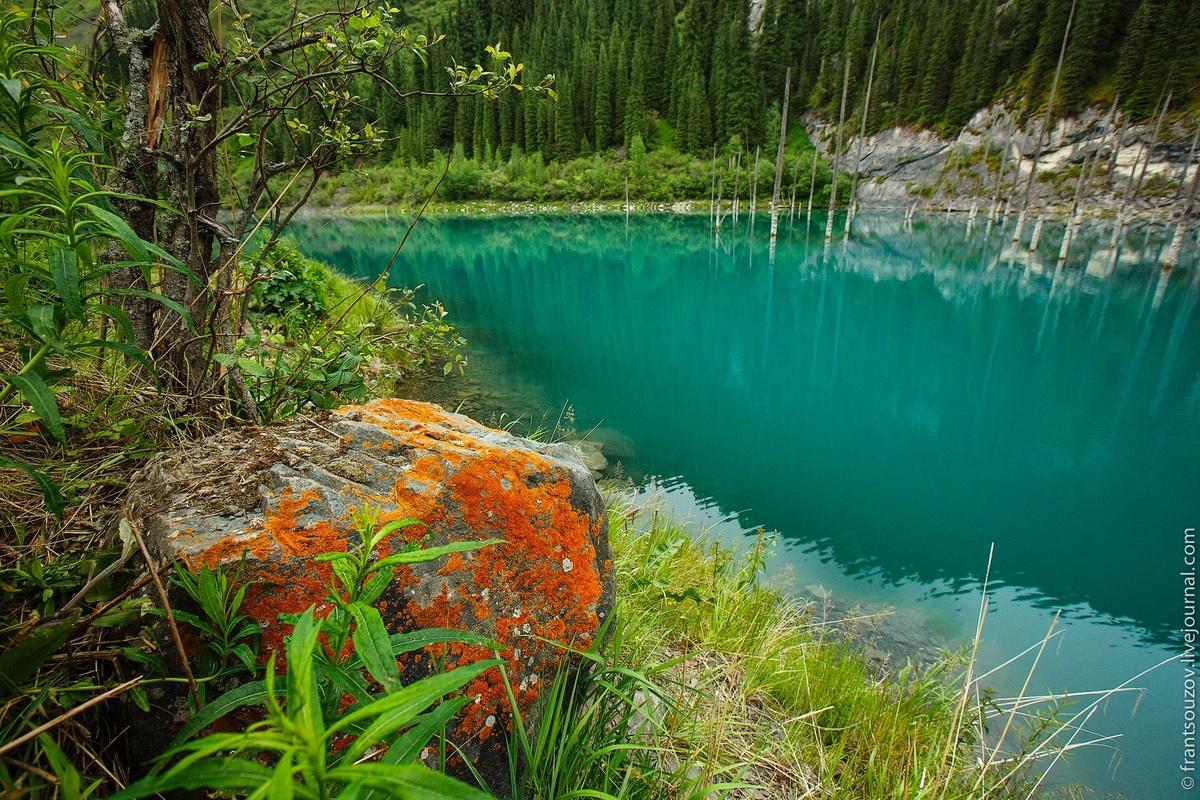 Lake Kaindy in Kazakhstan6