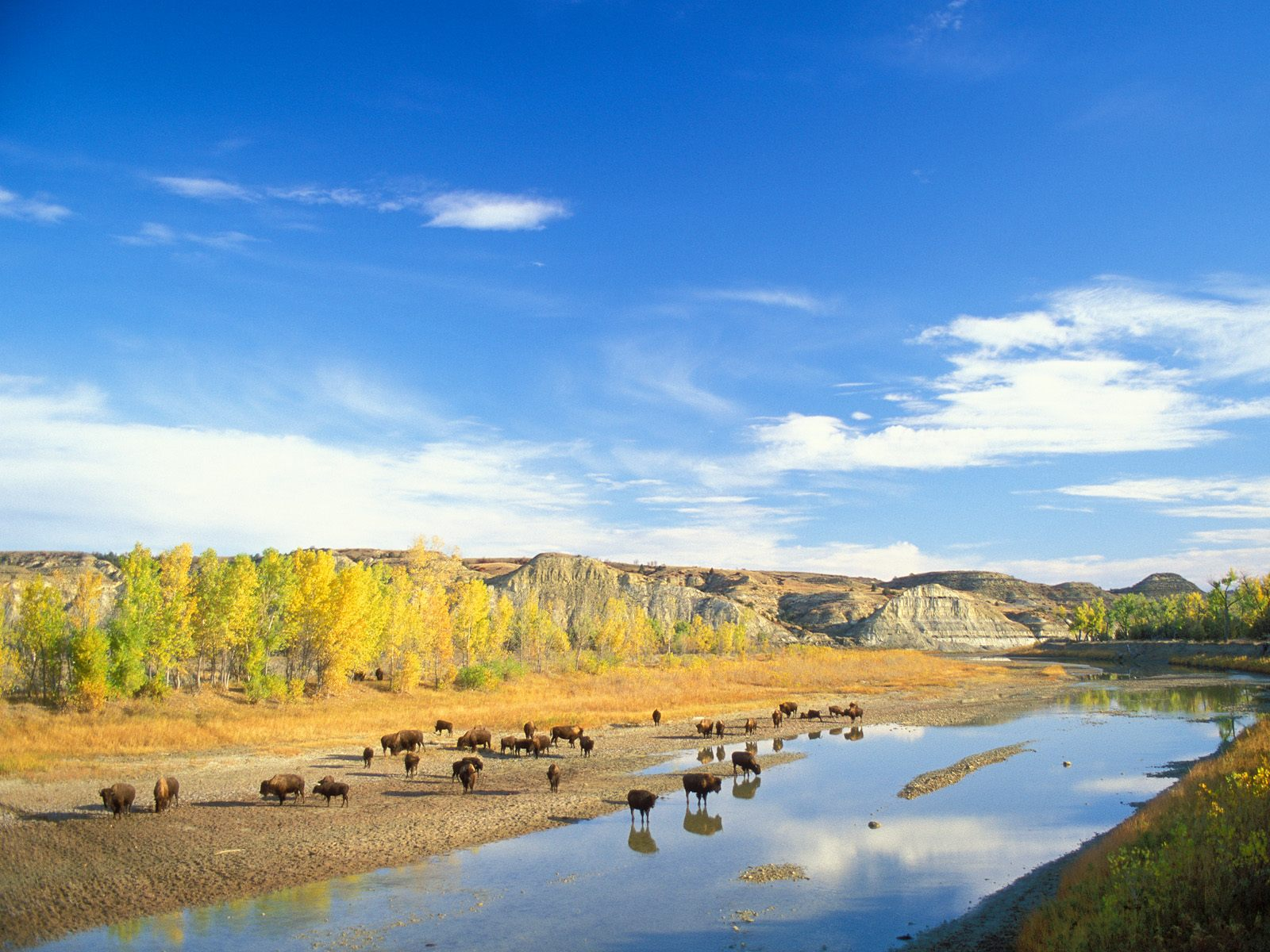 Theodore Roosevelt National Park in North Dakota2